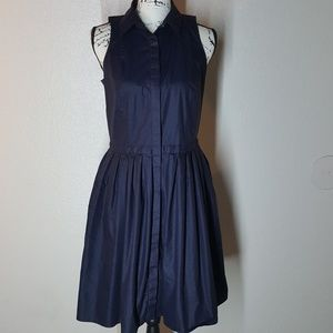 Ann Taylor fit and flare sleeveless dress size